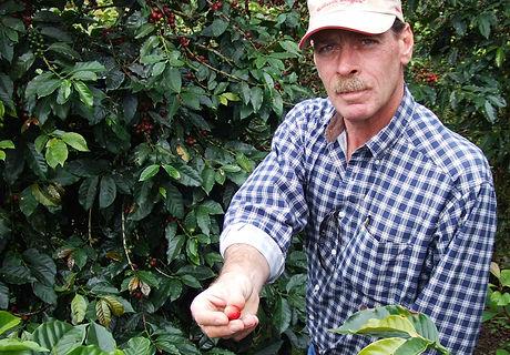 Guatemala kaffeplukker.jpg