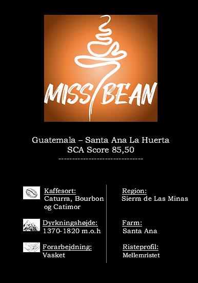 Guatemala - Finca Santa Ana La Huerta
