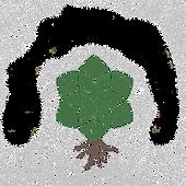SOLA%2525252520(1)_edited_edited_edited_