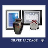 Gateway package_silver.jpg