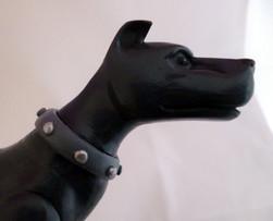 ace-the-dog (2).jpg