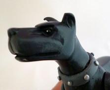 ace-the-dog (6).jpg