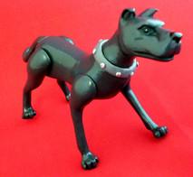 ace-the-dog (1).jpg