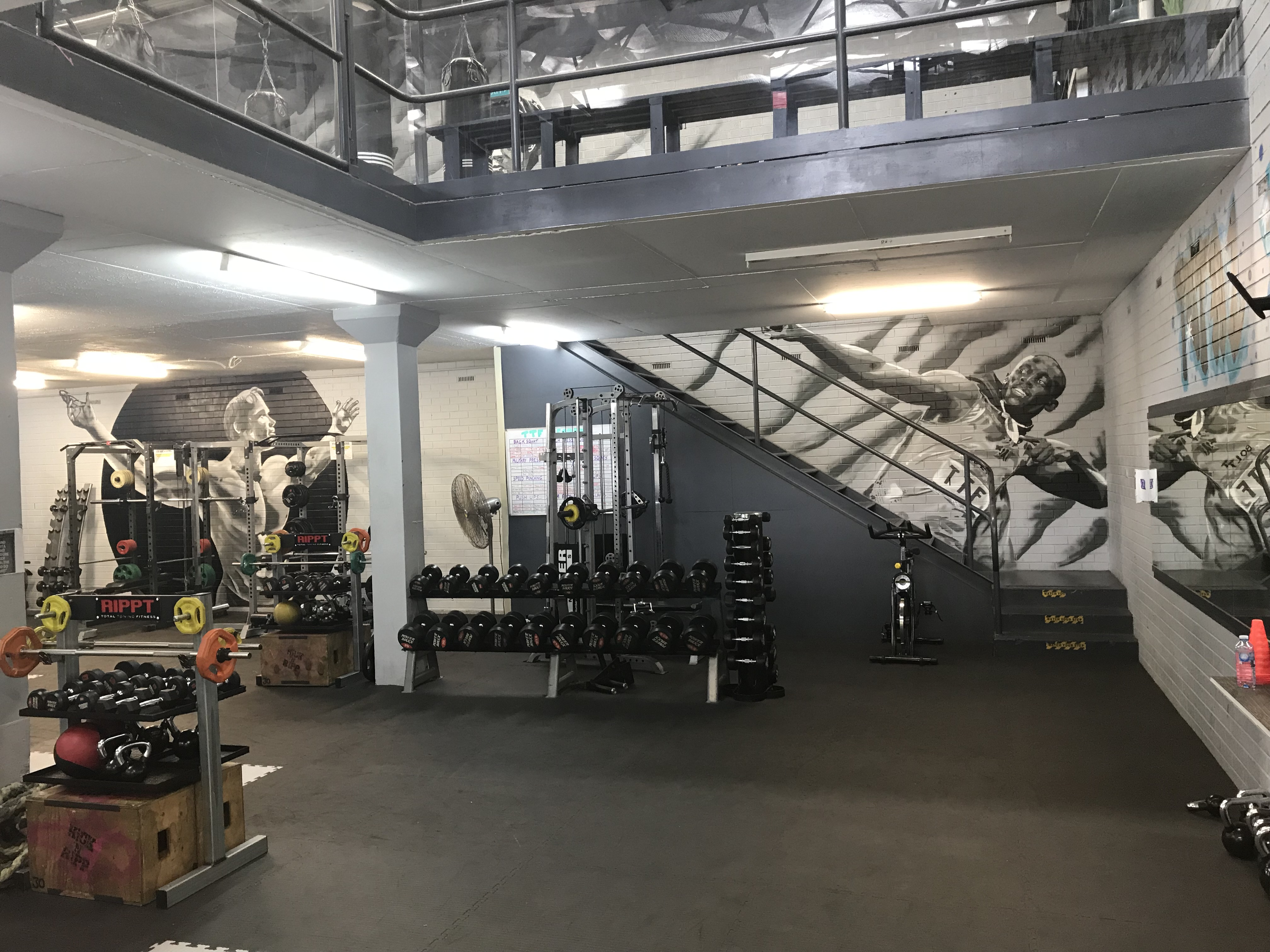 The RIPPT room - weights classes