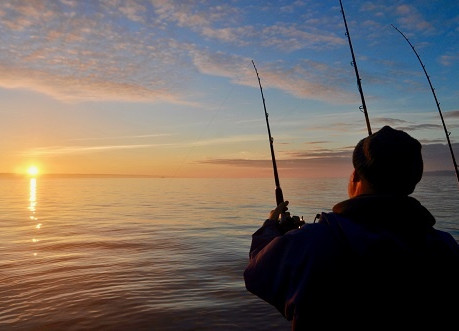 Angling Trust Sea Angling Newsletter