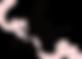 The Lingerie Room chester Logo