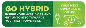 Nanbo Hybrid Car Insurance Button.png