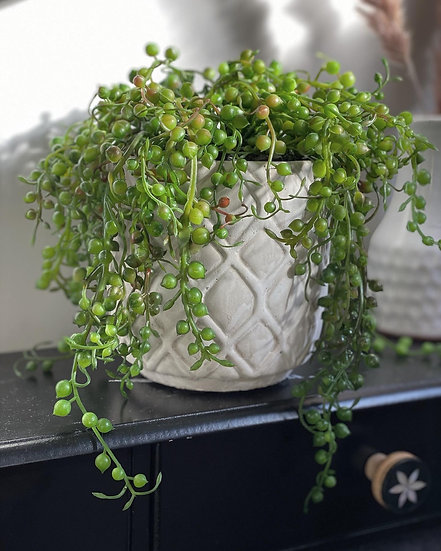 Large faux string of pearls plant in pot