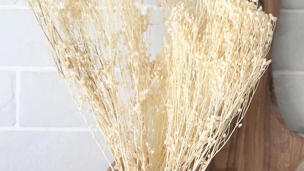 Bunch of Broom (dried plant)