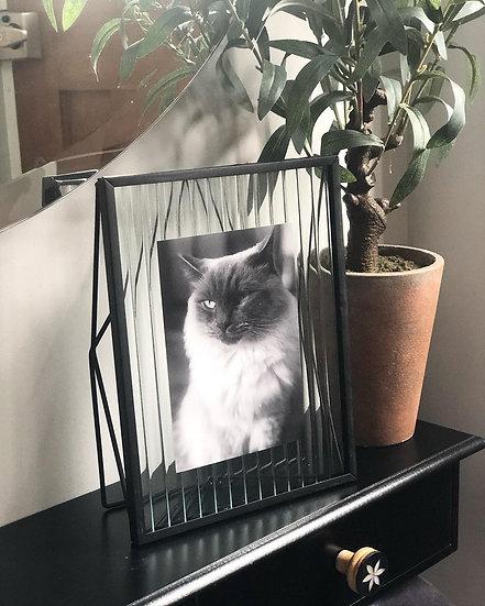 Fluted glass black metal photo frame