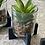 Thumbnail: Faux succulents on black stands