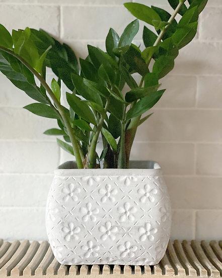 Floral concrete planter