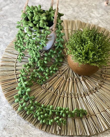 Faux hanging string of pearls in concrete pot with rope hanger