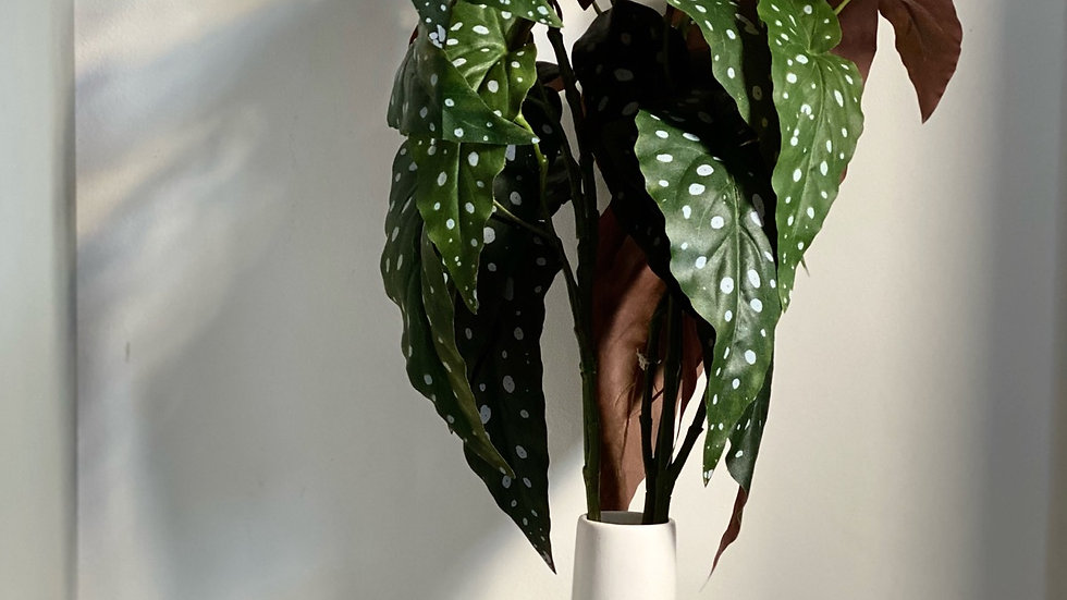 Begonia spray 90cm long