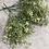 Thumbnail: Mini ivory bush for medium vases