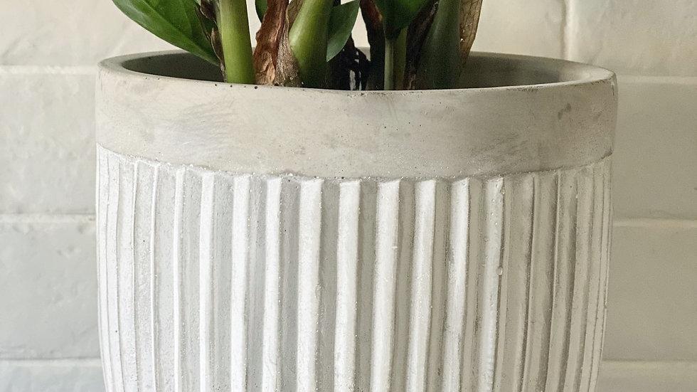 Langford grey ribbed plant pot