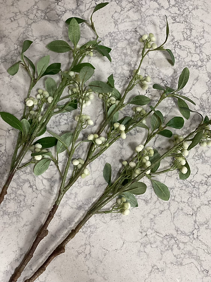Snowberry single stem