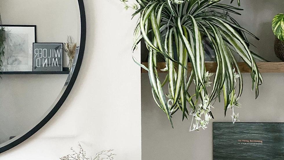 Chlorophytum faux bush 55cm tall