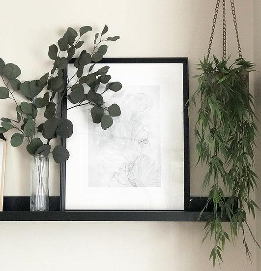 3 stems of preserve eucalyptus populus