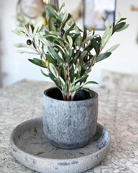 Faux olive bush in a black plastic pot