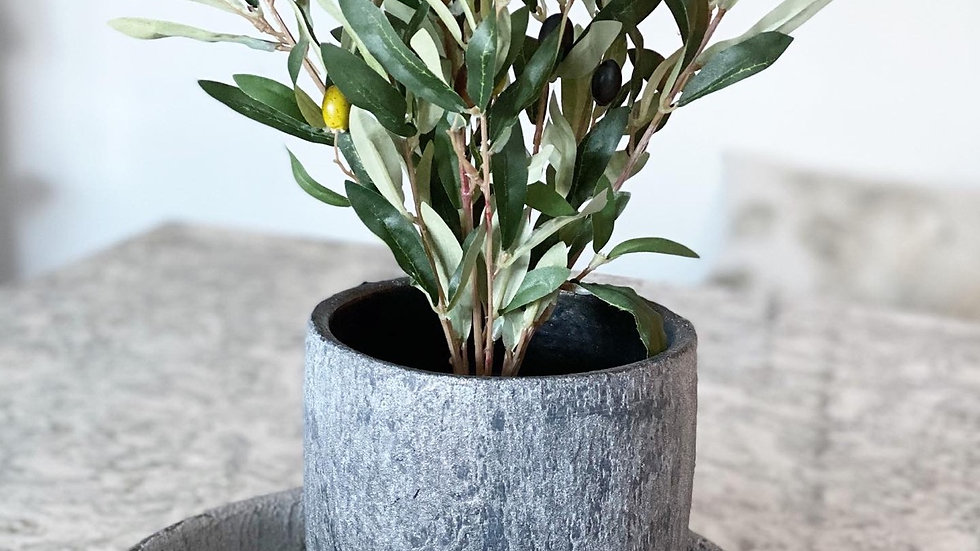 Faux olive bush in a black plastic pot