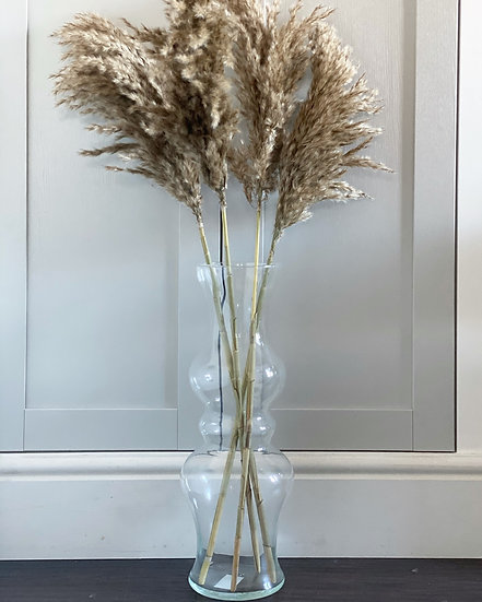 Mila vase and pampas bundle