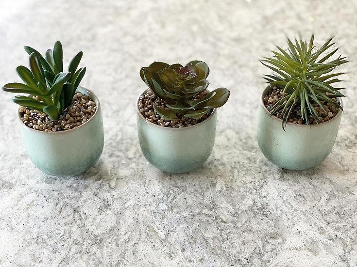 Faux succulents in ceramic pot