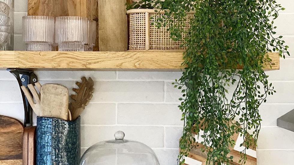 Trailing faux jasmine plant