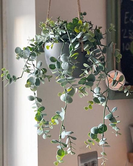 Faux hanging eucalyptus in a pot