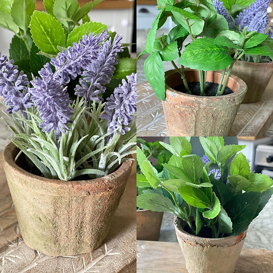 Faux lavender, mint or basil plants