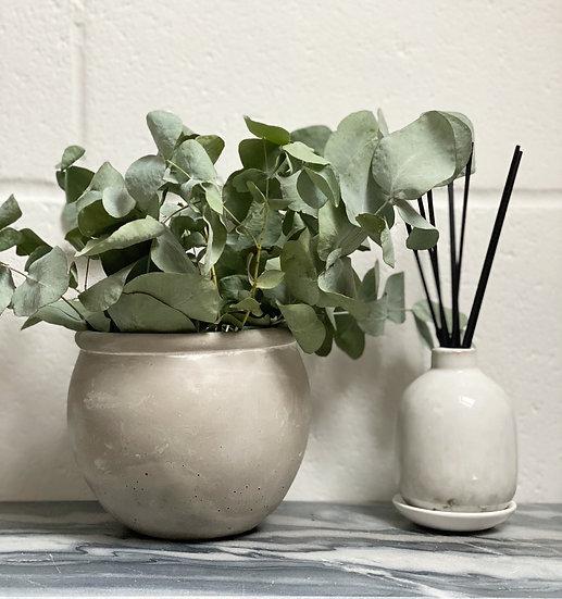 Dried eucalyptus in an aged terracotta pot