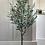 Thumbnail: Faux olive tree