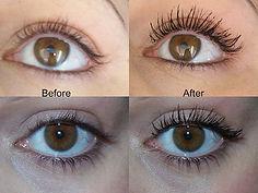 Eyelashes services