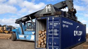 Unifloresta busca soluções para exportação de madeira