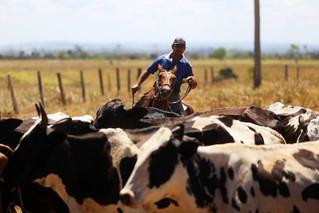 Regulariza Pará leva mutirão de validação do CAR a produtores do Xingu
