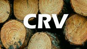 CRV médio do Estado do Pará é tema de reunião entre a Unifloresta e a Semas
