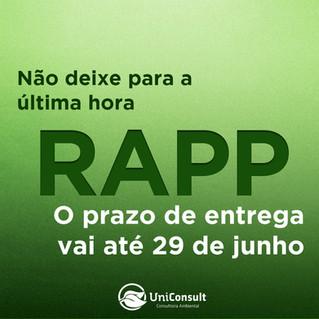 Prazo para entrega do RAPP 2019/2020 termina neste mês de junho