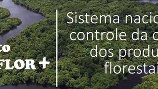 Unifloresta participa de capacitação sobre o Sinaflor+