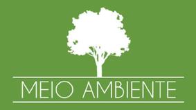 Representantes do setor de base florestal do Pará, se reúnem em prol do desenvolvimento sustentável