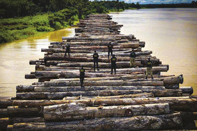 Juízes federais do Pará e Amazonas mandam PF liberar material apreendido em operação