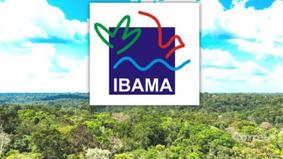 Nomeação indefinida do novo superintendente do Ibama-Pará, causa prejuízos ao setor ambiental