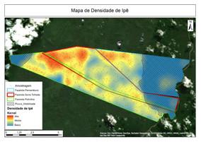 Uniconsult utiliza metodologia para identificar áreas com alta densidade de ipê