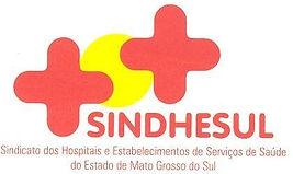 logo sindhesul.JPG