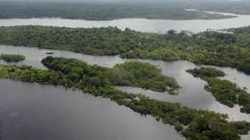 Estudo apresenta recomendações para o Plano Estadual Amazônia Agora