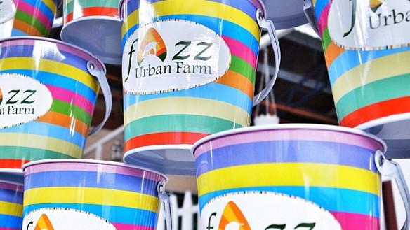 Products (FAZZ Urban Farm)
