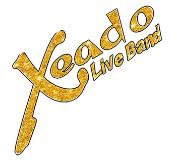 Xeado Logo Gold 2 met zwarte rand gedraa