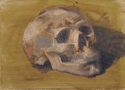 skull72©.jpg
