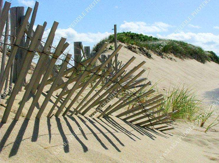 Dunes & Shadow