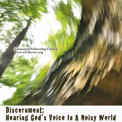 Discernment-2015nonames.jpg