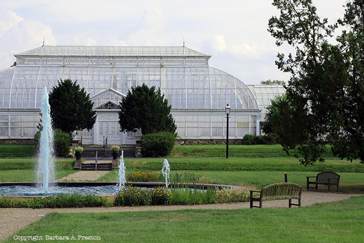 Greenhouse with Fountain